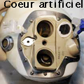 Le coeur artificiel